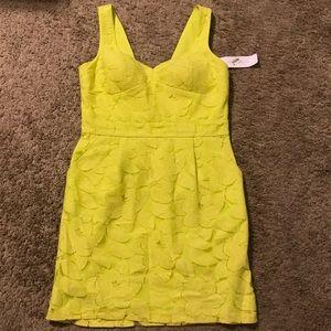 BCBGeneraton Lace Dress